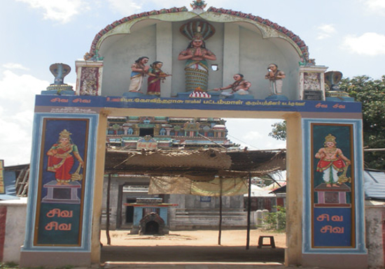 Sri Seshapureeswarar temple_thirupamburam